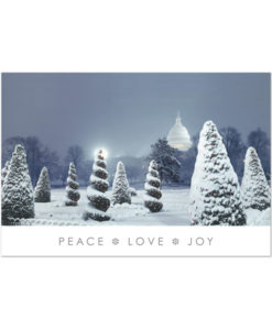 Botanic gardens holiday greeting card