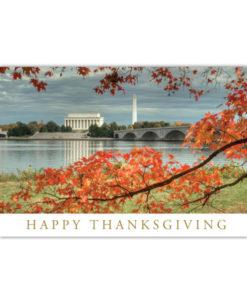 Washington DC Happy Thanksgiving greeting card