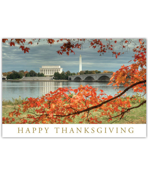 Washington DC Happy Thanksgiving greeting card