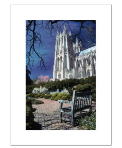 The National Cathedral in Springtime