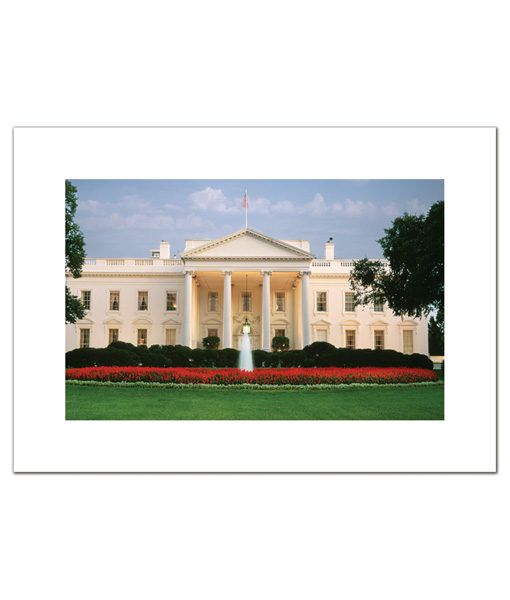 The White House in Springtime