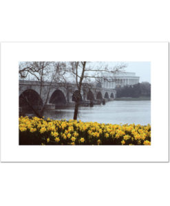 Lincoln Memorial Bridge in Spring blank card