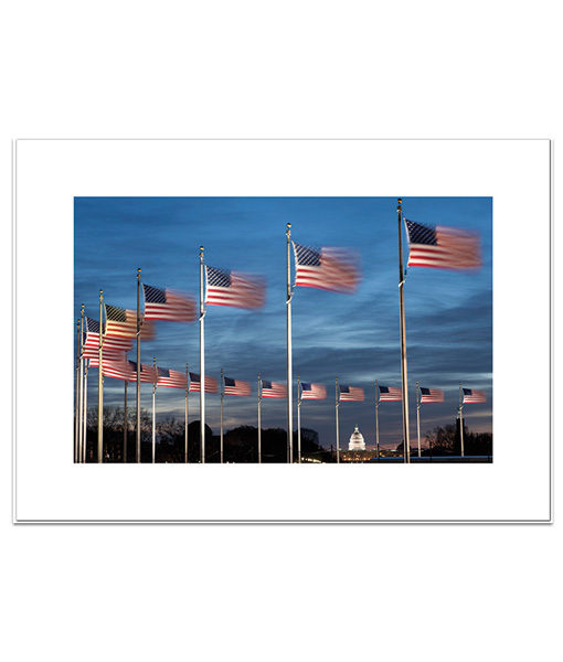 Washington DC evening with flags