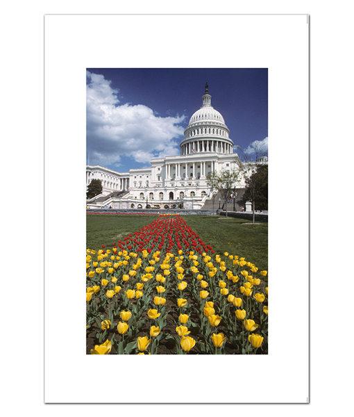 US Capital in Spring